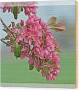 Cherry Blossom Spring Photoart Wood Print