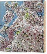 Cherry Blossoms Of The Sky Wood Print