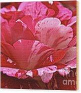 Cherry Chip Swirl Wood Print