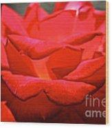 Cherry Red Rose Wood Print