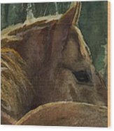 Chestnut Dreams Wood Print
