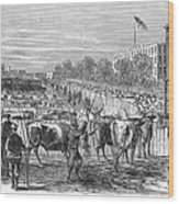 Chicago: Cattle Market Wood Print