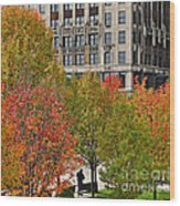 Chicago In Autumn Wood Print