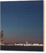 Chicago Navy Pier At Night Wood Print