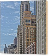 Chicago Willoughby Tower And 6 N Michigan Avenue Wood Print
