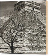 Chichen Itza Blk And White Wood Print