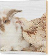 Chicken And Rabbit Wood Print