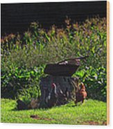 Chickens Of The Corn Wood Print