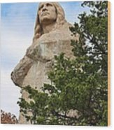 Chief Blackhawk Statue Wood Print by Bruce Bley