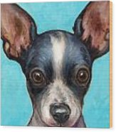 Chihuahua Puppy With Big Ears Wood Print