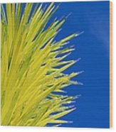 Chihuly Glass Tree Wood Print
