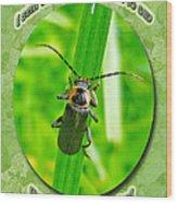 Child Kid Birthday Greeting Card - Lightning Bug Wood Print