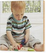 Childhood Development Wood Print by Ian Boddy