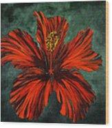 Chinese Rosa Wood Print