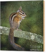 Chipmunk In The Forest Wood Print