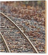 Chipmunk On The Railroad Track Wood Print