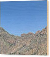 Chisos Mountain Campground View Wood Print