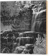 Chittenango Falls 2 Wood Print