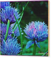 Chives For You Wood Print