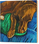 Chocolate Lab On Couch Wood Print