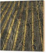 Chocolate Steel Wood Print