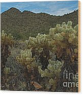 Cholla On The Mountainside Wood Print