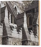 Christ Church Cathedral, Dublin City Wood Print