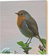Christmas Card Robin Wood Print