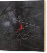 Christmas Eve - Northern Cardinal Wood Print