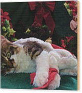 Christmas Joy W Kitty Cat - Kitten W Large Eyes Daydreaming About Xmas Gifts - Framed W Poinsettias Wood Print