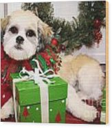 Christmas Portraits - Shihtese Wood Print