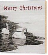 Christmas Swans 2367 Wood Print