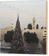 Christmas Tree In Manger Square Bethlehem Wood Print