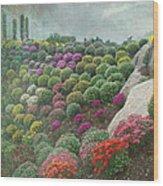 Chrysanthemum Garden - Ott's Greenhouse Schwenksville Pa Wood Print