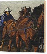 Rodeo Chuckwagon Racer Wood Print