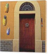 Cicada Door Arles France Wood Print