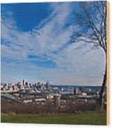 Cincinnati From Kentucky Wood Print
