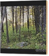 Cinematic Style Back Woods At Sunset Wood Print