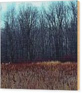 Cinnamon Fields Wood Print