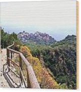 Cinqre Terre Corniglia From The Trail Wood Print by Marilyn Dunlap
