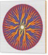 Circle Study No. 74 Wood Print