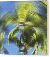 Circular Palm Blur Wood Print