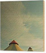 Circus Summers Wood Print
