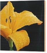 Citrus Rain II Wood Print