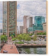 City - Baltimore Md - Harbor Place - Baltimore World Trade Center  Wood Print