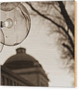 City Globes Wood Print