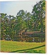 City Park Lagoon Wood Print