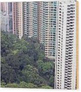 City Versus Nature Wood Print