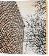 City Vs Nature Wood Print