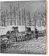 Civil War: Ambulances, C1864 Wood Print